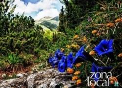 L'Abruzzo protagonista su Rai Uno nella puntata di Linea Verde